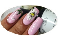 Gel Polish Light Rose Anleitung